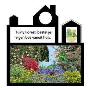 Odigibu: TuinyForest